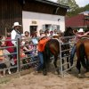 ranch_rodeo_gal_vogeltanz_16