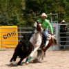 ranch_rodeo_gal_vogeltanz_9